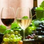 Wino portal